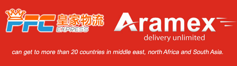 ARAMEX Express Service